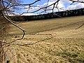 Chalkland Hills - geograph.org.uk - 133293.jpg