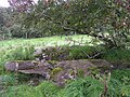Chambered grave, Inch Island - geograph.org.uk - 967690.jpg