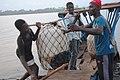 Chargeurs de bateau de transport 03.jpg