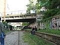 Chemin de fer de Petite Ceinture - gael 2.jpg