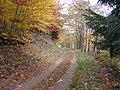 Chemin forestier au Fenarupt - panoramio.jpg