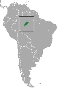 Chestnut-bellied Titi area.png