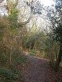 Chewton Bunny, footpath - geograph.org.uk - 1097796.jpg