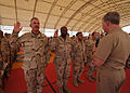 Chief of Naval Operations Visits Djibouti DVIDS85338.jpg