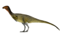 Chilesasaurus.png