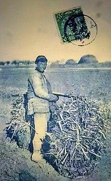 Lu Xun - Wikipedia