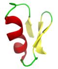 Chlorotoxin.png