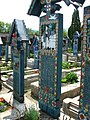 Cimitirul Vesel din Săpânța, județul Maramureș - detalii 05.JPG