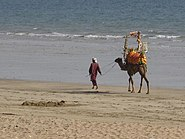 Kanab beach