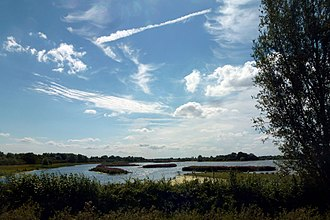Fen Drayton - Moore Lake at the nature reserve, viewed from the Guided Busway