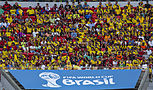 Colombia and Ivory Coast match at the FIFA World Cup 2014-06-19 (12).jpg