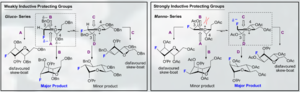 Glycosidic bond - Control of oxonium ion – Felkin-Ahn stereoselectivity chair forms