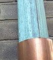 Copper (354631375).jpg