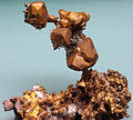 Copper crystals (Mesoproterozoic, 1.05-1.06 Ga; Quincy Mine, Hancock, Upper Peninsula of Michigan, USA) 2 (17120096608).jpg