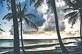 Coucher de soleil sur la plage Les Salines parc naturel régional de Martinique.jpg