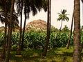 Countryside Near Hampi Village - India.JPG