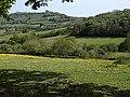 Countryside around Rora Farm - geograph.org.uk - 1302171.jpg