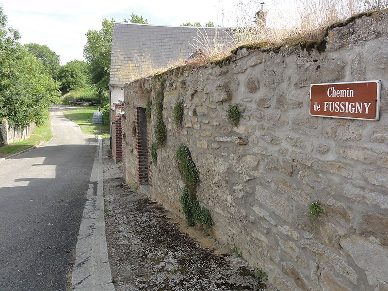 Courtrizy-et-Fussigny (Aisne) chemin de Fussigny