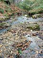 Creek river at Fallon Park in Raleigh, North Carolina.jpg