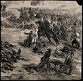 Crimean War; turkish ambulance men collecting the wounded fr Wellcome V0015361.jpg