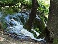 Croatia P8144691 (3939009900).jpg