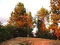 Cruz sobre el cerro San Rafael.JPG