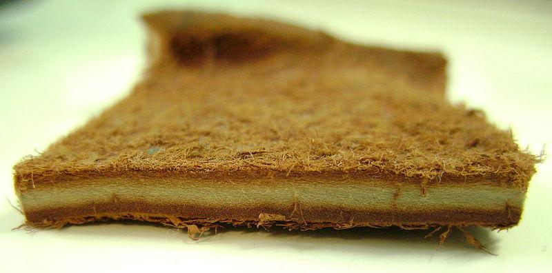 Fichier:Cuir de béluga (Delphinapterus leucas).jpg
