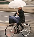 Cycling in the Rain, Osaka (11106854903).jpg