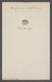 Cypraea costata - - Print - Iconographia Zoologica - Special Collections University of Amsterdam - UBAINV0274 088 02 0076.tif