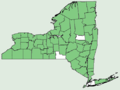 Cystopteris fragilis NY-dist-map.png