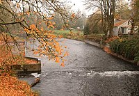 Fall image of the Nehalem River at Vernonia, Oregon