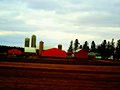 Dairy Farm in Leeds - panoramio.jpg