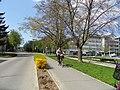 Deak ter - Sopron - panoramio.jpg