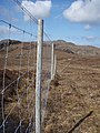 Deer fence on the Gairloch estate - geograph.org.uk - 779357.jpg