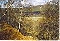Deeside, West of Pannanich. - geograph.org.uk - 167802.jpg