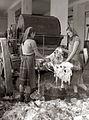Delavnica Odpada v Bohovi za čistilno bombaževino 1955.jpg