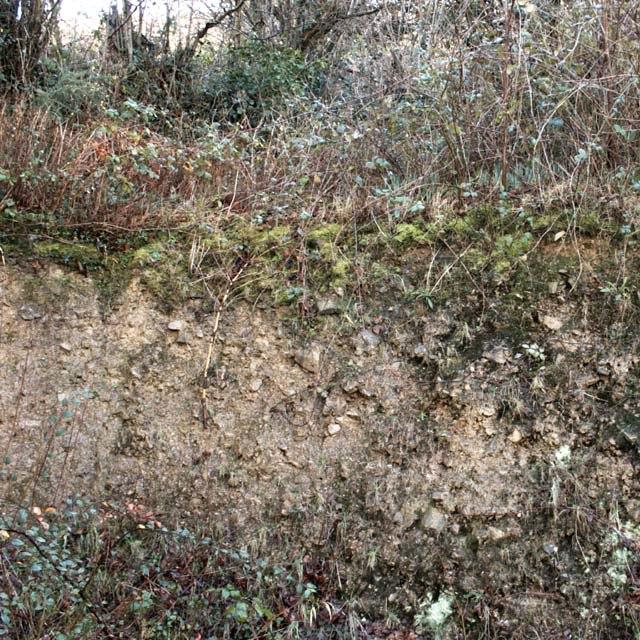 Devon Culm Subsoil - geograph.org.uk - 344702