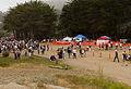 Dipsea Race 2013-48.jpg