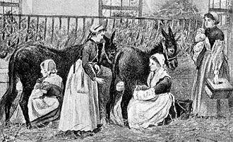 Human–animal breastfeeding - Donkeys suckling children in a French institution, 1895