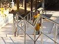 Divotee climbing steps at alipiri.JPG