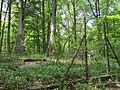 Dixon Cemetery Helena AR 009.jpg