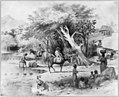 Dominican Republic, 1871)- Procuring water in Via River at Azua, for that city's daily consumption LCCN2003655466.jpg