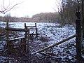 Double Stiles near Blean Woods - geograph.org.uk - 1652825.jpg