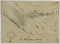 Drawing, Study- A right hand, 1630 (CH 18118653).jpg