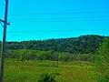 Driftless Area South of Gays Mills - panoramio.jpg