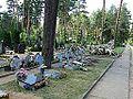 Dukstynos kapinės, partizanų kapai.JPG