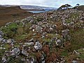 Dun Totaig - geograph.org.uk - 1531364.jpg