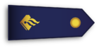 Rank epaulette of a Dutch police employee who has limited to no legal powers but still works in uniform and thus wears rank insignia.