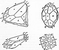 EB1911 Crystallography - Figs. 87 & 88 - Crystal of Zircon.jpg