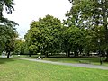 Early autumn in Watts Park - geograph.org.uk - 2073499.jpg